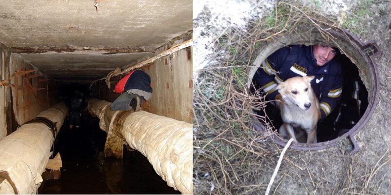 «КРЫМ-СПАС»: крымские спасатели освободили мужчину из «плена теплотрассы»