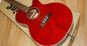 Акустические гитары Takamine? Где купить?