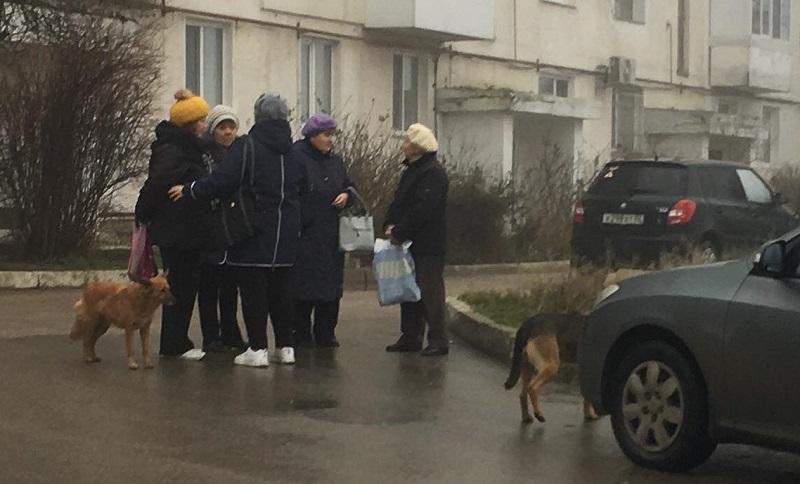Проект «Добрый автобус» севастопольского «Добровольца» работает. Проверено